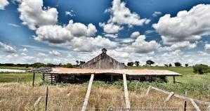 Texas Landscape 2