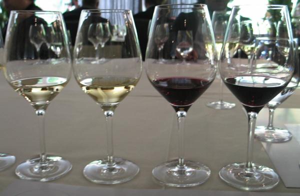 Slijed četiriju predstavljenih vina (Snimila Božica brkan / Acumen)