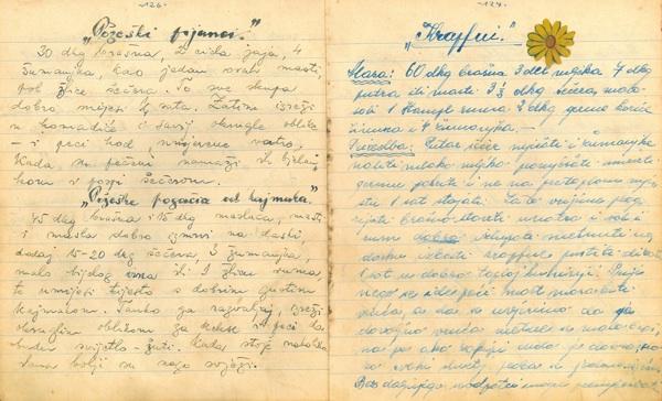 Dio bilješki Mire Matić (Fotografija Muzej grada Požega)