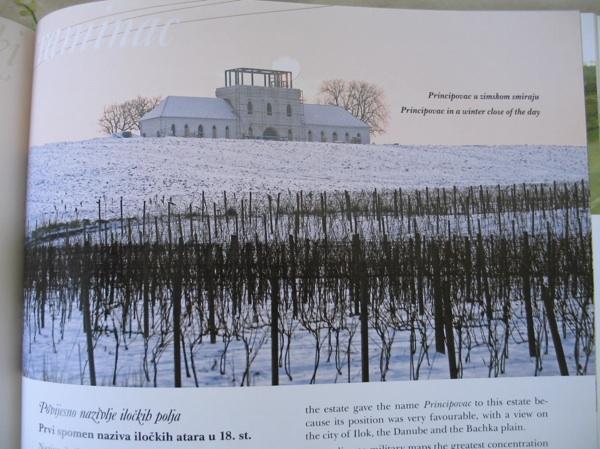 Principovac pod snjigom: iz knjige Iločki traminac - princ s Principovca