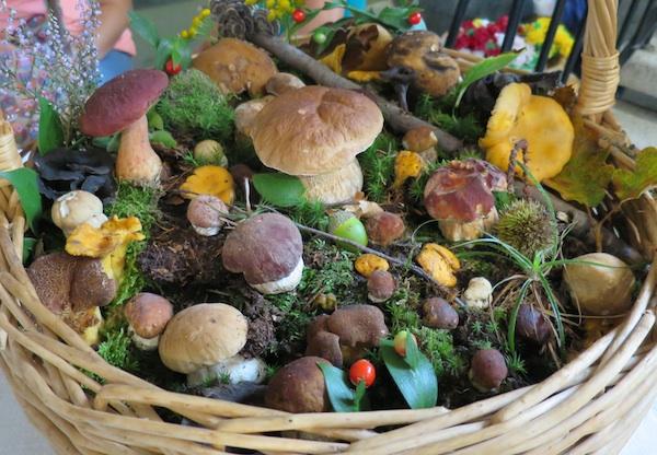 Raskoš iz zagorskih šuma samo ukras stola sa slasticama (Snimio Miljenko Brezak / Oblizeki)