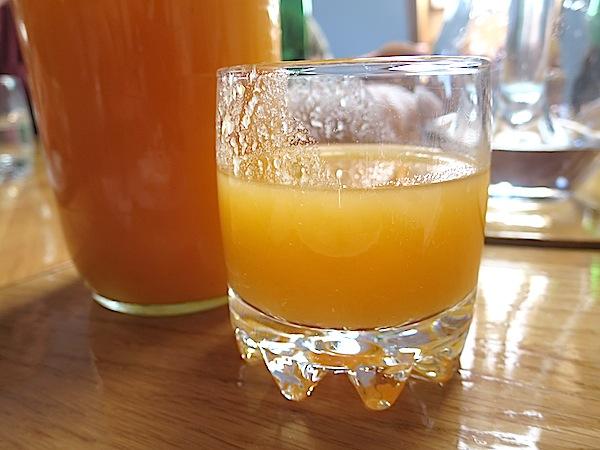 Vrlo zanimljiv sok od plodova iz vlastita vrta (Snimila Božica Brkan / Oblizeki)