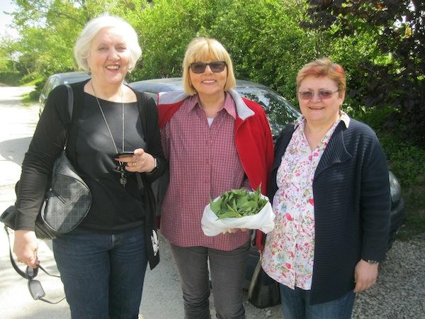 Dobrila Kezele s tek ubranim vršcima mlade koprive i nas dvije prijateljice Živanom Morić i sa mom (Fotografija Miljenko Brezak / Oblizeki)