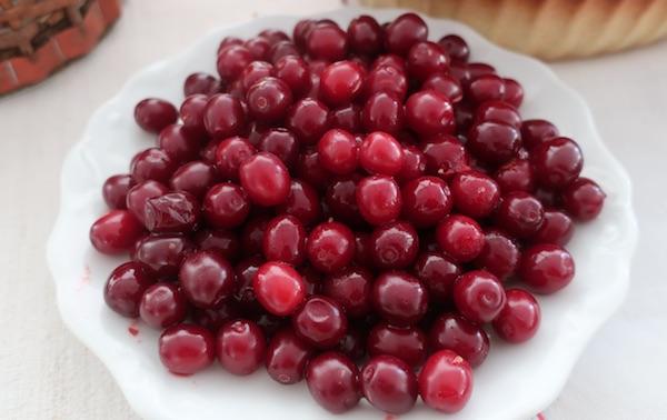 Plodovi drijenka (Fotografija Božica Brkan / Oblizeki)