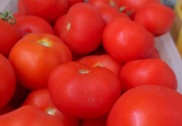 Odaberite zrele i zdrave plodove (Fotografija Miljenko Brezak / Oblizeki)
