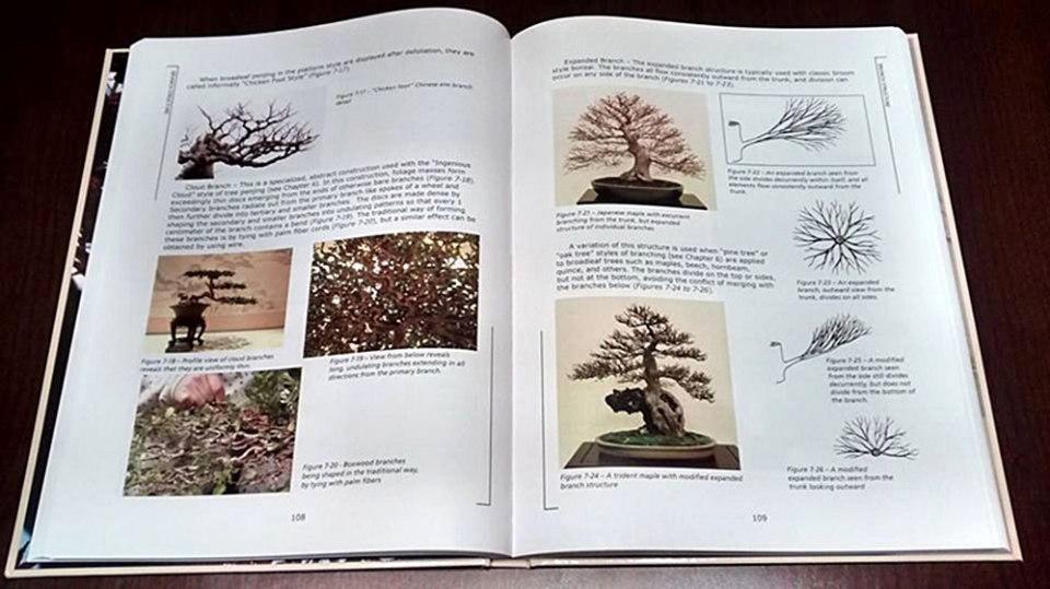 John Naka Técnicas de Bonsai Volume 1