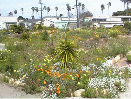 Voltaire Park 2003