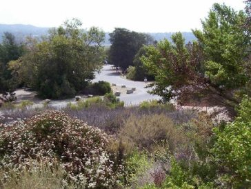 San Mateo campground is saved by the decision.