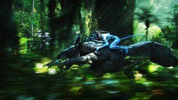 Avatar warrior