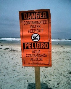 pollutedsigndogbeach1