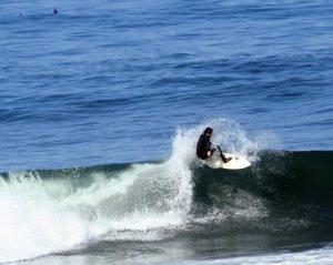 shark-ocean-beachSF