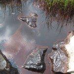 oil spill gunk