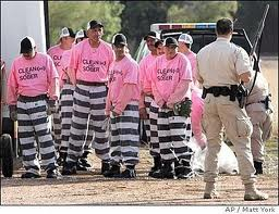 sheriff joe inmates pink