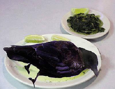 Crow-plate.jpg?w=400&ssl=1