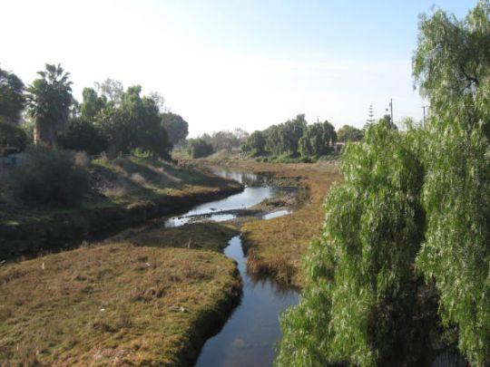 rose creek view