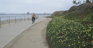 Mission Bay BIkeRide 3Q 47 pathNWMB