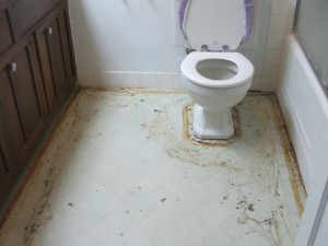 Judi Curry toilet afterflood
