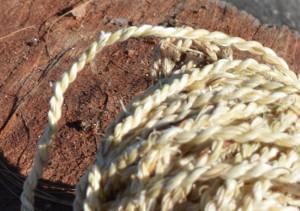 Yucca rope JR 04