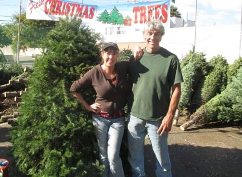 OB Xmas trees mw 1