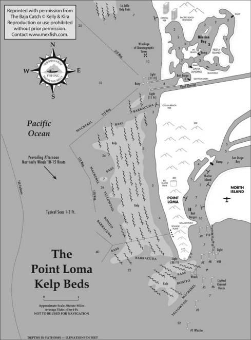 Point Loma kelp beds