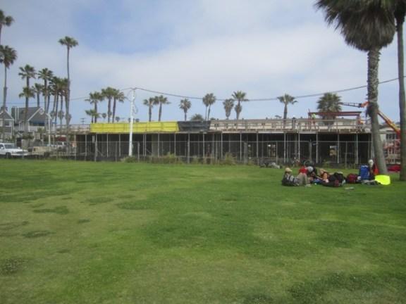 OB construct Sarato grass