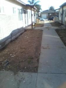 OB Saratoga TenantAbuse sidewalk