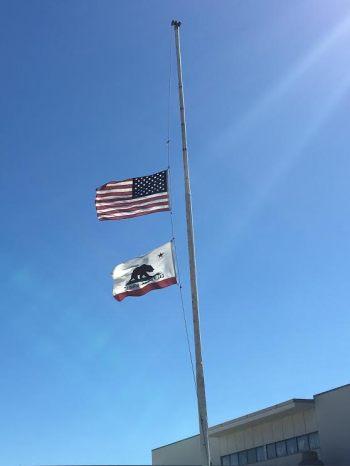 flags half mast DMV