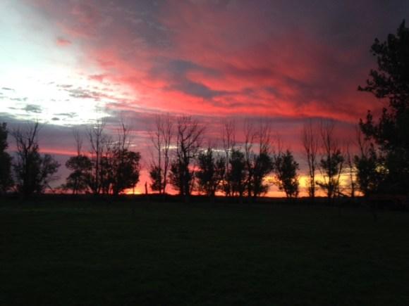 judi-curry-farm-sunrise