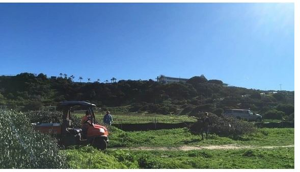 News and Notices for Ocean Beach and Point Loma – Early