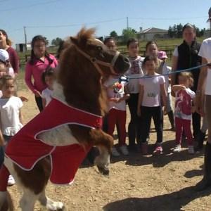 El centro de Betsaida participa en el campamento de Semana Santa de la escuela hípica 'Los Almendros'