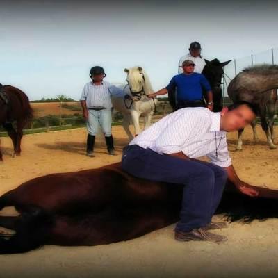 Los residentes de la Casa de Misericordia Betsaida, de la Asociación de Obras Cristianas de Gibraleón, se benefician de la terapia con animales