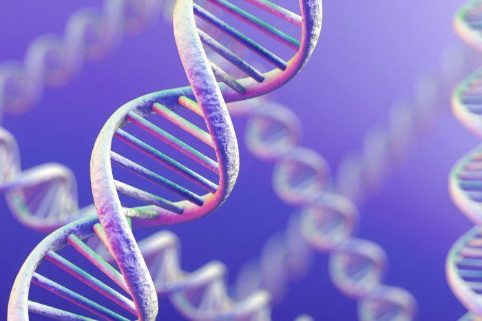 بعد عالم الوراثة يكون الأساس النظري للتربية موجز ا علم الوراثة كأساس نظري للاختيار ما هو الأساس النظري للاختيار