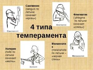 Χαρακτηριστικά Halerikov