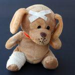orthopädische Hundebetten für eine optimale Heilung