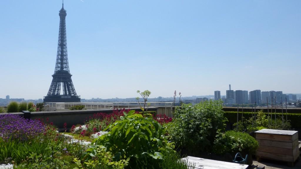 Toiture de la Cité de l'architecture et du patrimoine par Les Jardins de Gally