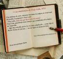 Las enseñanzas de Fray León nº22