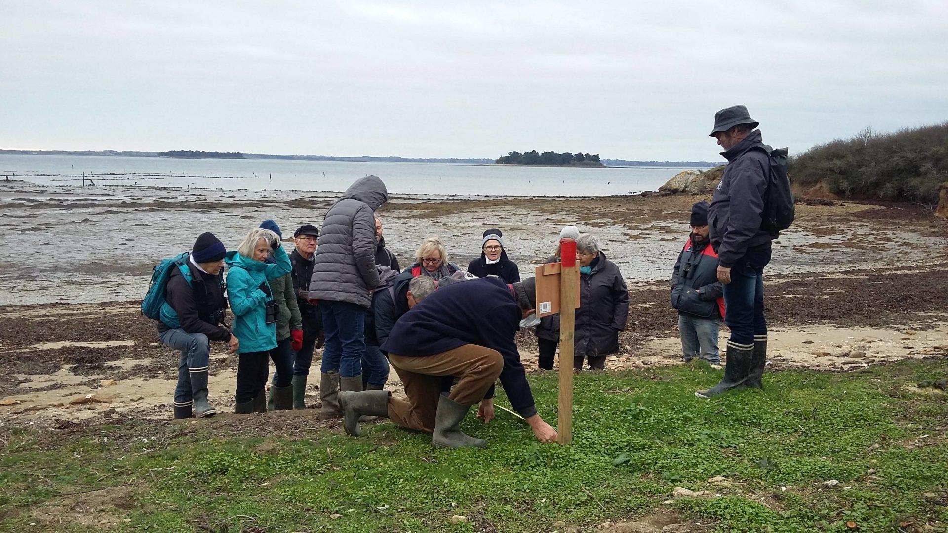 Photo des bénévoles du RIEM en action sur une plage de lÎle de Boëde