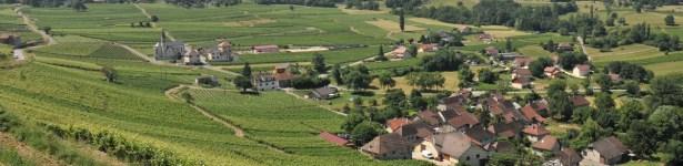 Jongieux – Côteau de Marestel