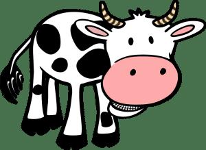 cow-48494_960_720