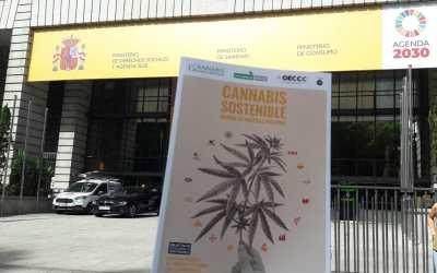 El Observatorio Europeo del Cultivo y Consumo de Cannabis entrega al Ministerio de Derechos Sociales un informe sobre políticas del Cannabis y la Agenda 2030