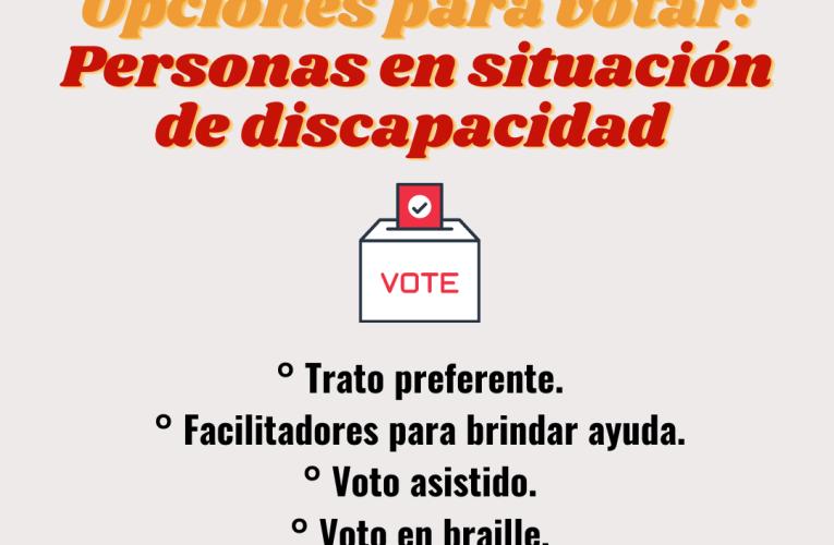 Plebiscito 2020: voto de personas con discapacidad y otros datos claves
