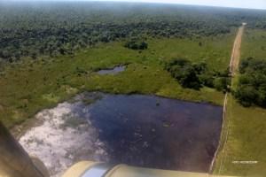 Vista aérea en 2013 de  los sembrío de totora, sobre un lado del Sitio PAC 1-3. A simple vista verde, debajo es petróleo