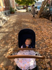 Our mid-day family walks with Weston and Avett