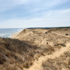 Truro Beach from Fox Bottom Area, Cape Cod, MA