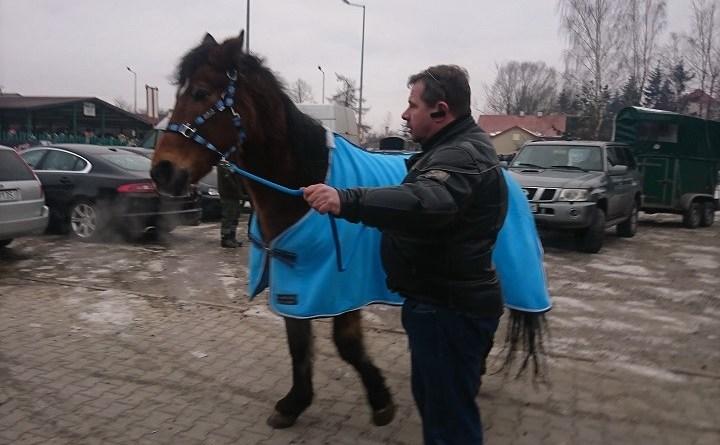 Targ koni w Skaryszewie