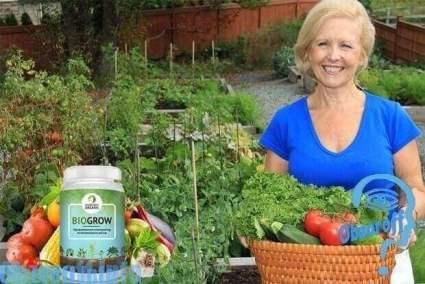 банка Biogrow 50 мл для улучшения роста растений