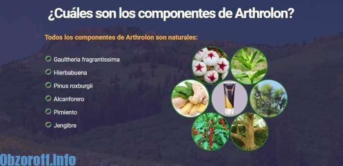 Arthrolon: crema para el tratamiento y rehabilitación de las articulaciones