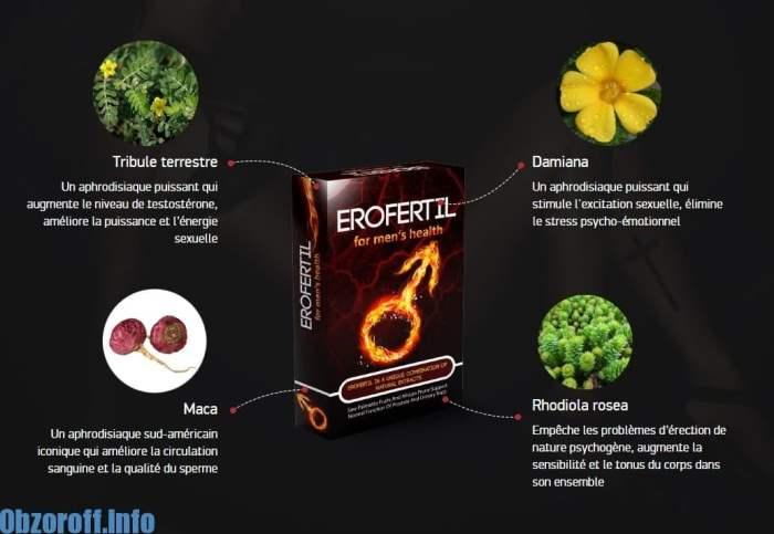 COMPOSITION Erofertil