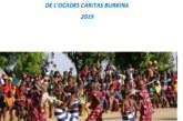 Rapport 2019 d'analyse et de suivi de la cohésion sociale dans les zones d'intervention de l'OCADES Caritas Burkina