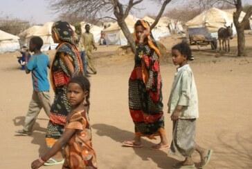Camp de refugies maliens  à Goudebou: Plus de 10 000 personnes installées